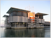 Lisbon Oceanarium.